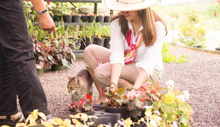 women picking out plants at a nursery